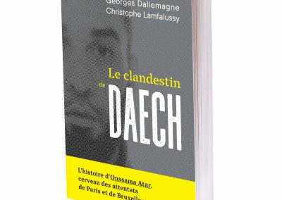 CP : Le clandestin de Daech